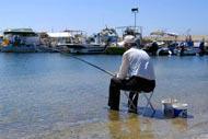 Pafos, c'est aussi la douceur de vivre à la chypriote : soleil, tranquilité et bons petits plats!