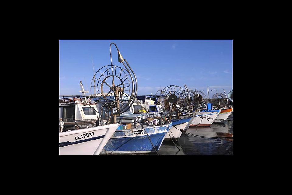 Cerca de la zona antigua, dominado por su fuerte, el puerto de Paphos es un lugar agradable para pasear y de animación turística.