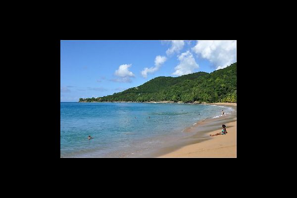 You will find three beaches close to Deshaies, including the beach of Grande Anse, which is known for being the most beautiful one in Basse-Terre.