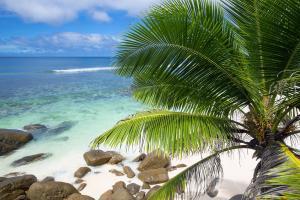 Océan Indien; Seychelles; Alphonse Island;