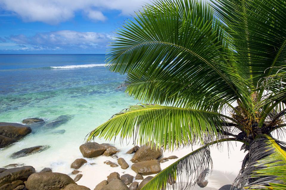 L'isola corallina di Alphonse, larga 1,2 km, è situata a 500 km a sud-ovest di Mahé nell'arcipelago degli Amiranti. Calcolare tra i 60 e gli 80 minuti di volo dalla capitale. L'isola è famosa in tutto il mondo per la pesca con palamito e la pesca alla mosca. Per molto tempo, essa ha ospitato l'albergo Alphonse Island Resort, oggi chiuso....