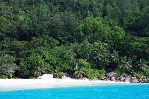 Océan Indien; Seychelles; Silhouette;