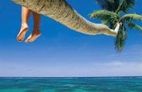Treasure Beach è situata ad un'ora e mezza a sud di Negril. Per accedervi, passerete da Black River, dove potrete vedere i coccodrilli, facendo un giro in barca. Abbiamo visitato solo un hotel: il Jake che, solo lui, è un vero e proprio luogo di soggiorno con uno stile atipico, la sua architettura ispirata a Gaudì, i suoi due ristoranti e la sua magnifica veduta panoramica sull'oceano. Vi consigliamo ...