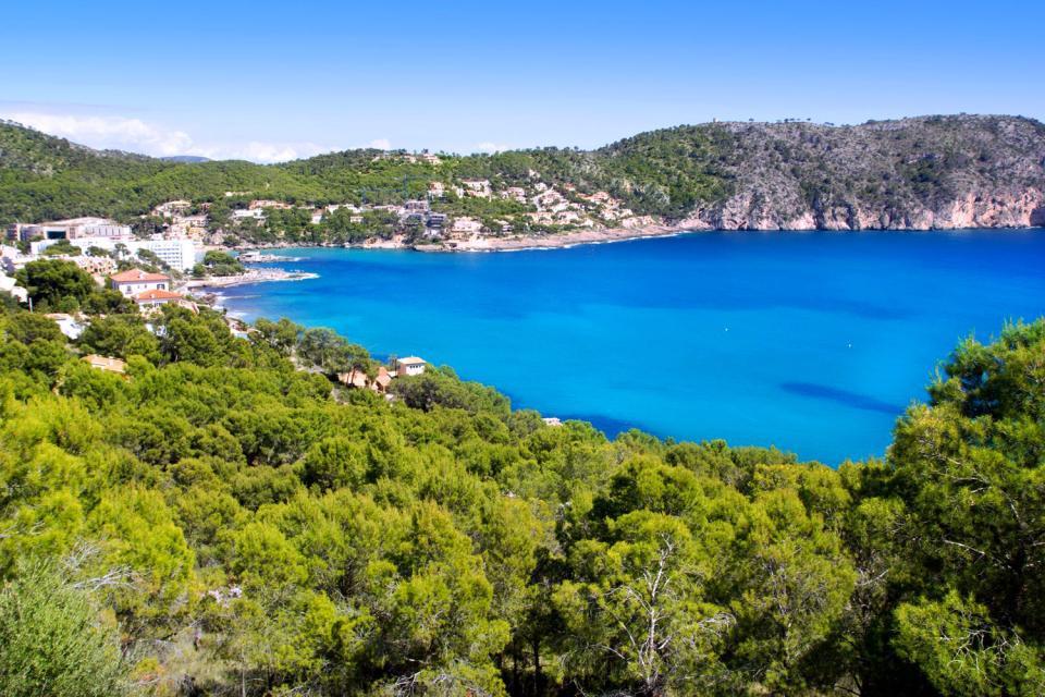 Situé à l'extrême ouest de la baie de Palma, sur la côte sud-ouest de Majorque, Camp de Mar est une petite station balnéaire célèbre pour son restaurant niché sur une île accessible depuis la plage par un ponton de bois. Elle se trouve à 25 kilomètres à l'ouest de Palma. L'aéroport se trouve à 35 km. La plage de Camp de Mar est une crique magnifique aux eaux limpides (on voit les poissons), encadrée ...