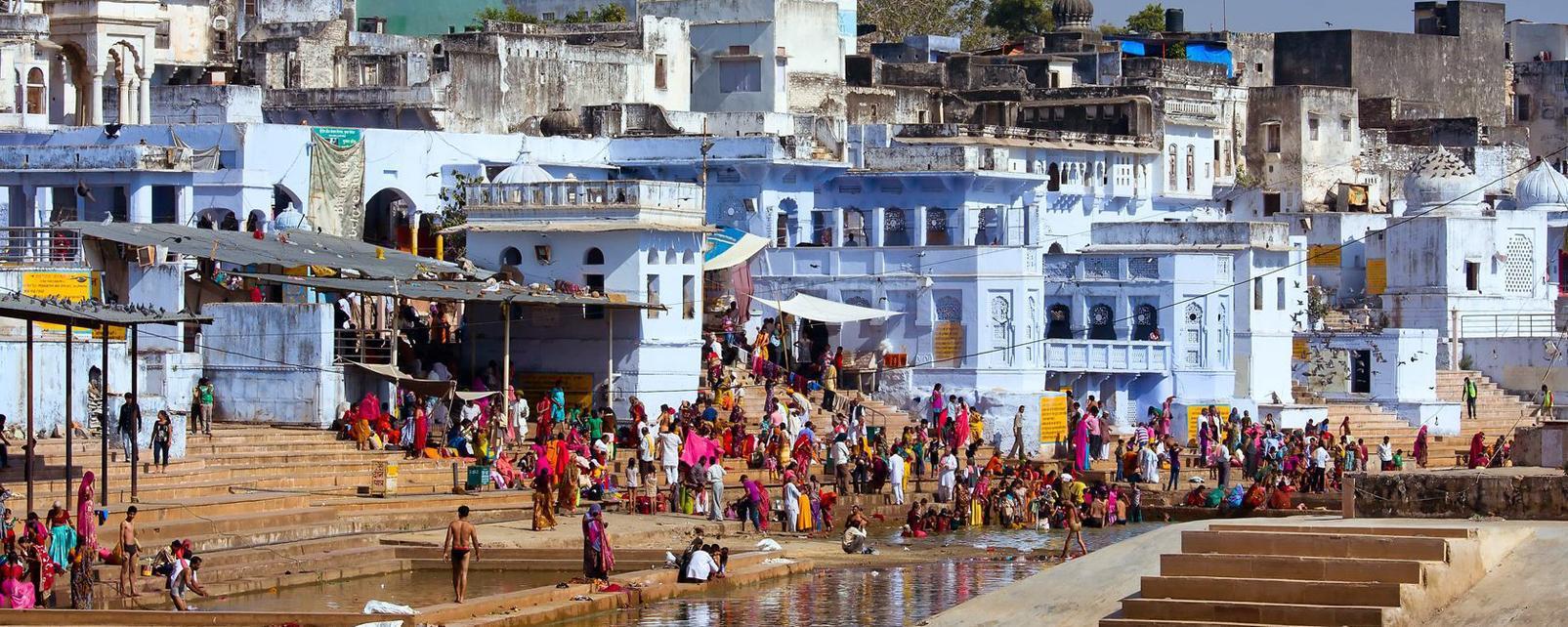 Asie; Inde; Rajasthan; Pushkar;