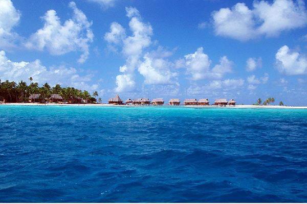 Ancien volcan disparu sous les eaux, Tikehau est un atoll, également appelé île basse. Son anneau corallien, qui représente l'étendue de l'ancien volcan, mesure 28 km de diamètre. Les îlots émergés, formés par l'accumulation de corail, sont plantés de cocotiers, arbres de fer et badamiers. Superbe et préservé, l'atoll est réputé pour ses plages de sable rose ainsi que pour son lagon, l'un des plus ...