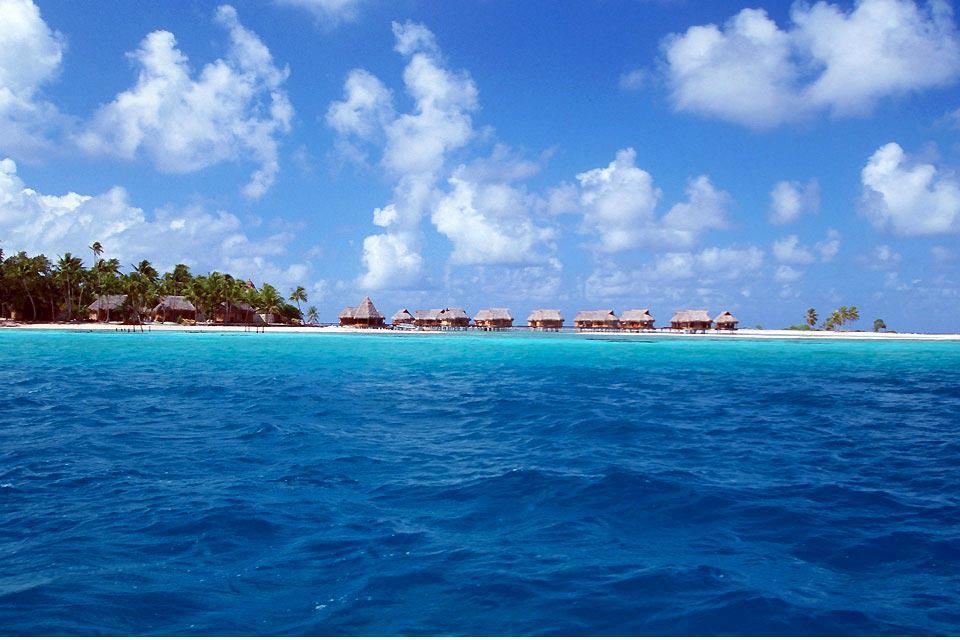 El Tikehau es un atolón, también llamado isla baja, un antiguo volcán desaparecido bajo las aguas. Su anillo de coral, que representa la extensión del antiguo volcán, mide 28 km de diámetro. Los islotes emergentes, formados por la acumulación de coral, están repletos de cocoteros, árboles filaos y almendros malabares. El atolón, magnífico y conservado, es conocido por sus playas de arena rosada, además ...