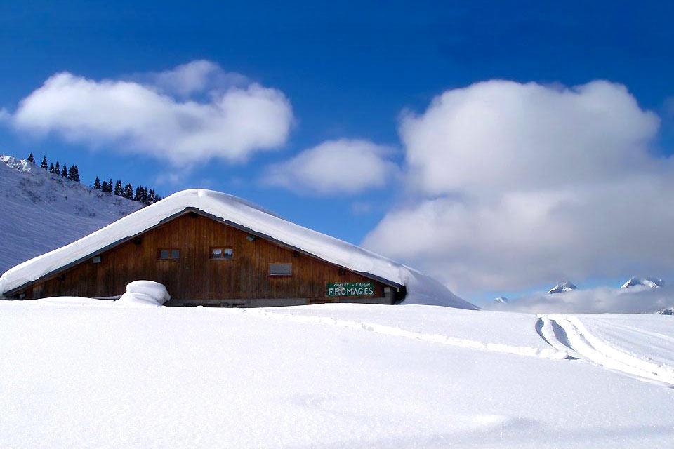 Samoëns fait partie du Domaine du Grand Massif. Le Domaine du Grand Massif, entre Genève et Chamonix, au Nord de la Haute-Savoie, est en fait une réserve naturelle qui compte 5 stations: Samoëns, Morillon, Flaine, les Carroz et Sixt-Fer-à-Cheval. Des villages en basse altitude à l'ambiance familiale et conviviale, animés et habités été comme hiver. S'élevant à 2500 mètres d'altitude au maximum, les ...