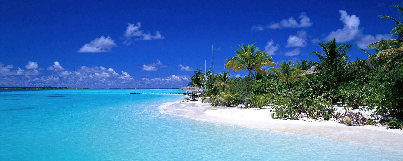 Océan Indien; Maldives; Atoll de Ari Nord;