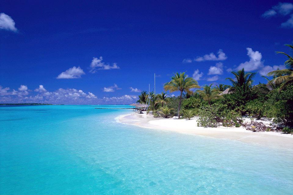 Ari Nord è uno degli arcipelaghi più turistici delle Maldive. L'arcipelago è costituito da numerose isole, tra cui il bello ed originale Dhoni Migili, che vi ospita in bungalow ed un battello molto confortevole... L'arcipelago include anche la sottile e lunga isola Kuramathi, l'unica delle Maldive ad avere 3 hotel....