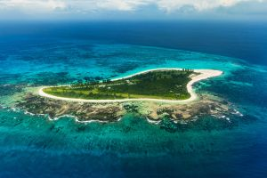 Océan Indien; Seychelles; Bird Island;