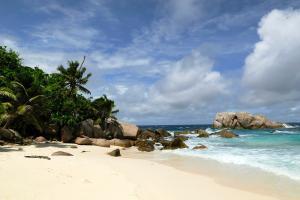 Océan Indien; Seychelles; Ile Cousine;