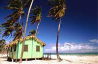 Tra il Mar dei Caraibi e l'Oceano Atlantico, Punta Cana è la stazione balneare più famosa della Repubblica Dominicana. Ed a ragione... Le meravigliose spiagge private del canale La Morana che si estendono per oltre 40km potrebbero quasi far parte del patrimonio mondiale. Acqua trasparente, palme da cocco, sabbia chiara... un cocktail magico per trascorrere eccellenti vacanze rilassanti. Al sole ...