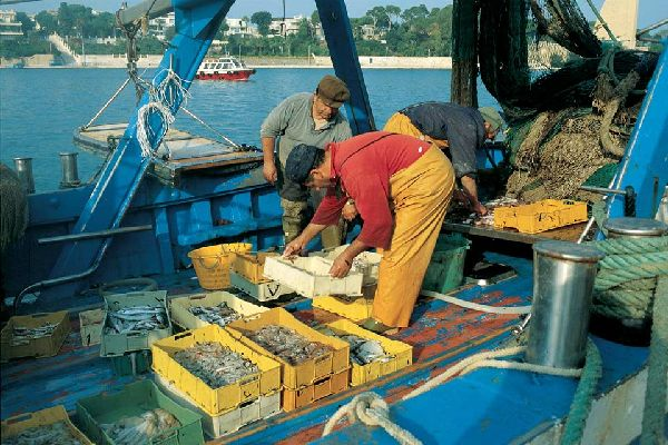 Fish, used in particular to make excellent soups, is the king of typical cuisine in Brindisi