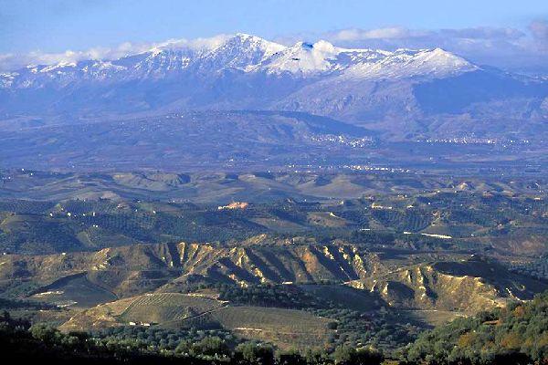 Wenn Sie geografisch nicht besonders bewandert sind, müssen Sie nur wissen, dass es sich um die Fußsohle des Stiefels von Italien handelt. Die Region Sybaris liegt am Golf von Tarrente. Eine schmale Küstenebene trennt das Gebirge vom Meer und birgt ein reiches Landwirtschaftsgebiet mit hie und da einigen Hotels inmitten von Pinienwäldern, die sich entlang der riesigen Strände entlangziehen. Glücklich ...