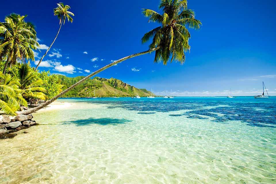 Isla alta situada en la estela de Bora, cerca de Huahine y rodeada por el mismo arrecife coralino que la isla de Raiatea, Tahaa es a la vez un destino chic y natural. Los hoteles situados en los motus son de una clase exclusiva (servicio y capacidad reducida), los alojamientos en la isla alta (pequeños hoteles y pensiones) se funden en la naturaleza circundante (bosques, cocoteros a pie de mar, flores ...