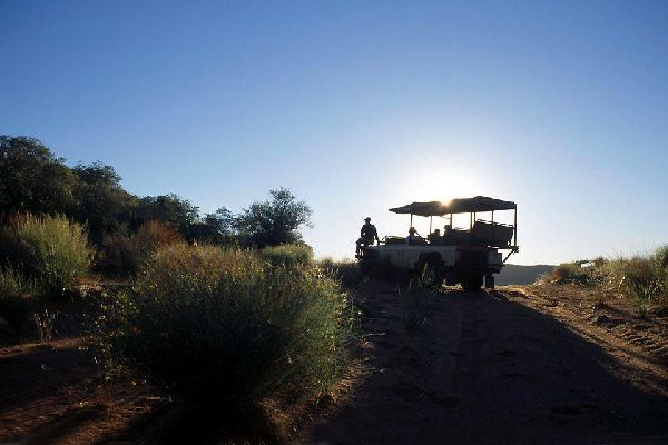 """Wir befinden uns in einem schönen und riesigen Reservat, das offiziell als """"Tswalu Private Game Reserve"""" bezeichnet wird. Wie der Name schon sagt, handelt es sich um ein privates Gelände und außerdem um einen nicht alltäglichen Ort in Südafrika. Tatsächlich befinden wir uns hier im größten Privatreservat des Landes. Es ist sage und schreibe 103'000 Hektar groß!  Wie man uns erklärt hat, haben sich ..."""
