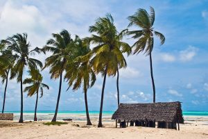 Jambiani, Zanzibar, Tanzanie,