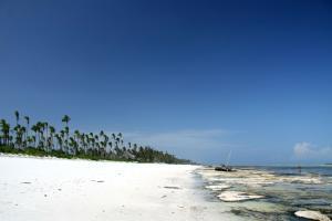 Afrique; Zanzibar; Matemwe;