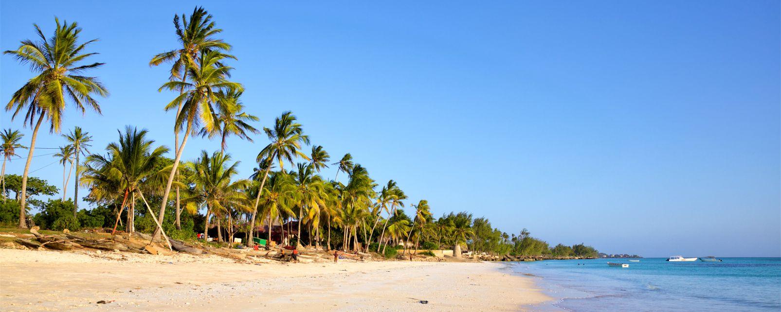 Afrique; Zanzibar; Kizimkazi;