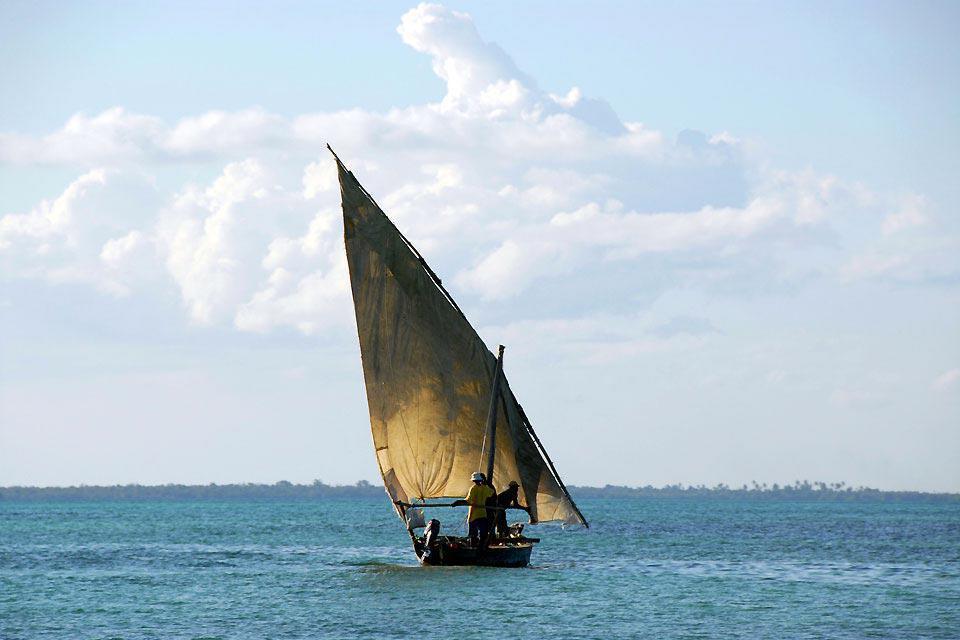 Situé sur la pointe sud de l'île, le village de Kizimkazi est essentiellement connu pour ses excursions à la rencontre des dauphins. Avec ses 15 zones particulièrement idéales pour la plongée, il est la destination des activités subaquatiques par excellence. Toutefois, hormis la richesse de sa faune et de sa flore aquatique, la région reste la moins développée au niveau touristique. Le petit nombre ...