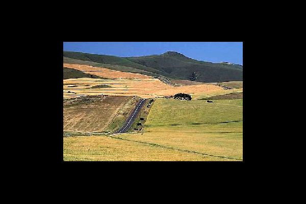 La ville de Bloemfontein est entourée de parcs et de réserves.