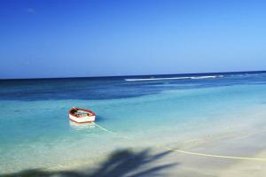 Caraïbes; Caraibes; Guadeloupe; Sainte Rose;