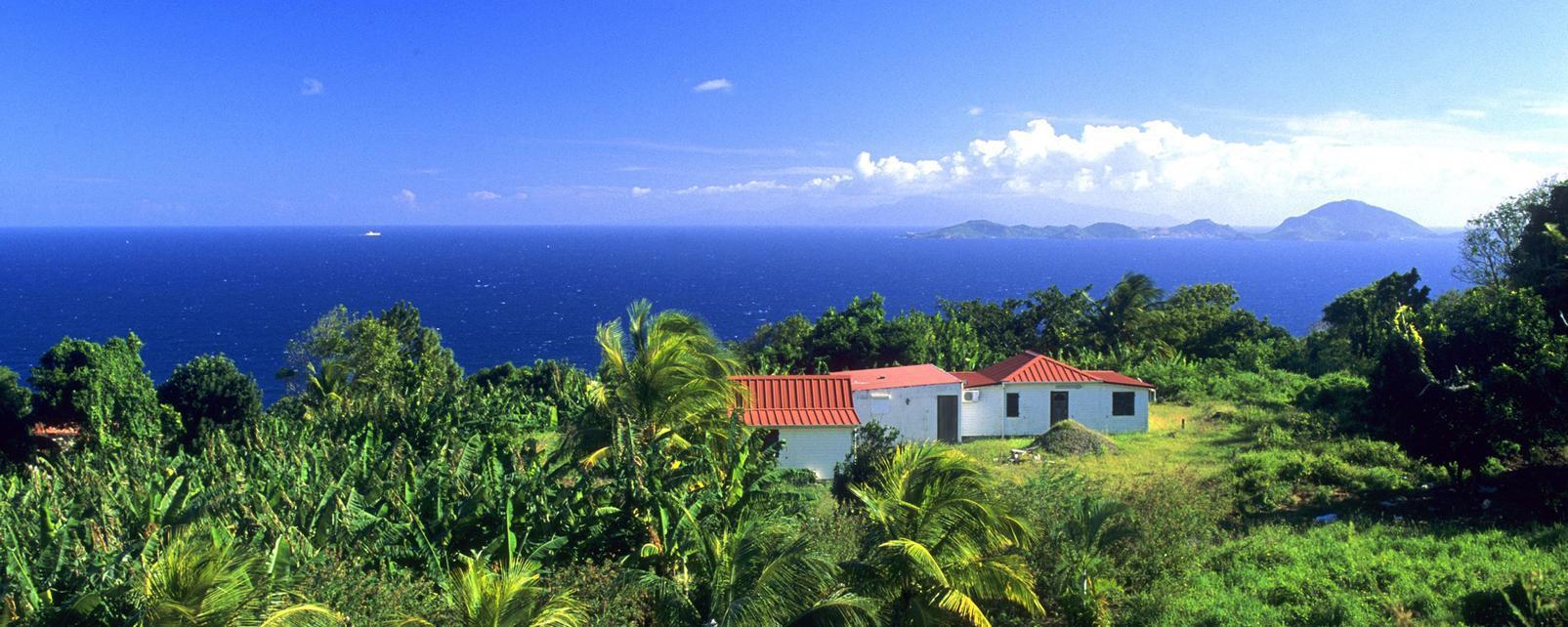 Caraïbes; Caraibes; Guadeloupe; Trois Rivieres; Trois Rivières;