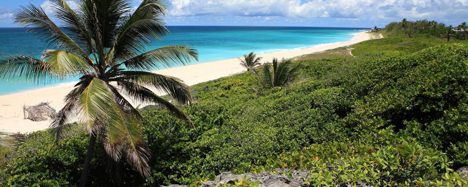 Caraïbes; Caraibes; Barbade; Oistins;