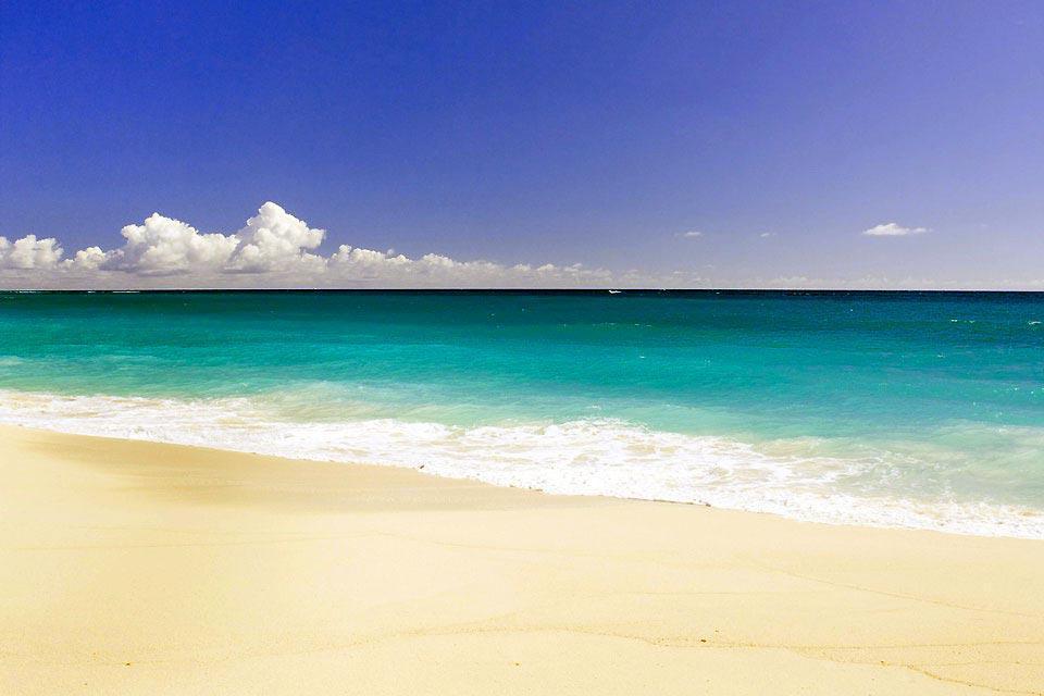 """Saint-Joseph est l'un des onze districts de la Barbade. Elle est située à l'est de l'île. A découvrir : le village de Bathsheba, célèbre pour sa magnifique plage. C'est là que se tiennent les compétitions internationales de surf, dans le célèbre spot de surf : le """"Soup Bowl"""". A voir également les jardins tropicaux de Flower Forest, d'Andromeda Gardens et d'Orchid World Andromeda. L'hôtel phare du coin ..."""