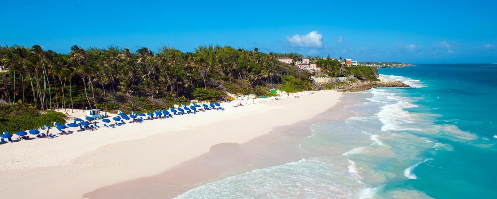 Caraïbes; Caraibes; Barbade; Crane;