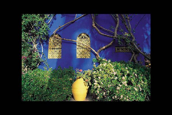 Il giardino botanico di Majorelle è una delle principali attrazioni di Marrakech. Accoglie varie specie rare in un'atmosfera incantevole.