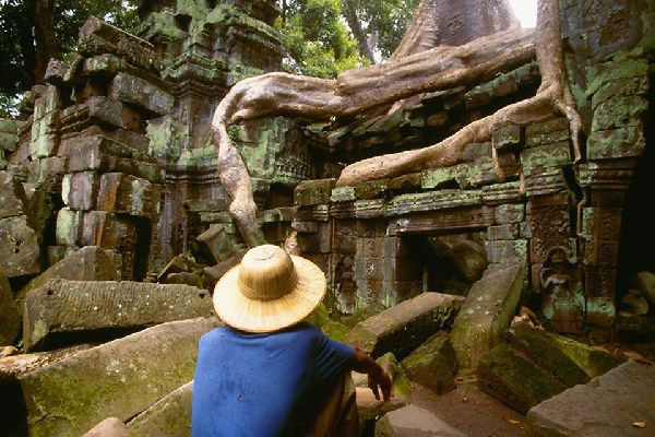 Many of the Angkor temples are buried in the abundant vegetation of the tropical jungle.