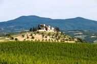 In der Umgebung von Siena befinden sich zahlreiche Renaissance-Villen und Schlösser, die vom lokalen Adel errichtet wurden.