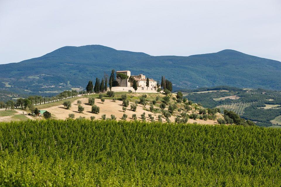 La región de Siena posee numerosas villas renacentistas y castillos, construidos en la época por la nobleza local.