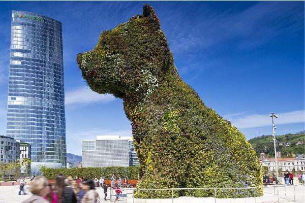 Dieser riesige West Highland Terrier ist zur Gänze mit Blumen bedeckt und thront vor dem Guggenheim Museum. Das Werk ist zum Maskottchen der Stadt Bilbao geworden.