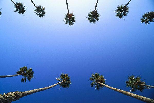 Daytona Auto Mall >> Viaggi Santa Monica, Stati Uniti - Guida Santa Monica con Easyviaggio