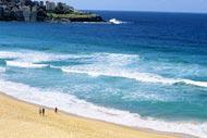 Sydney has more than 70 beaches, the most famous of which: Bondi and Manly.