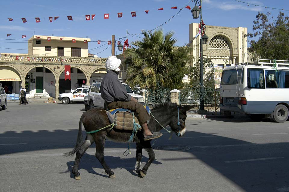 The administrative centre of southwestern Tunisia, the small city of Tozeur is home to more than 70,000 inhabitants.