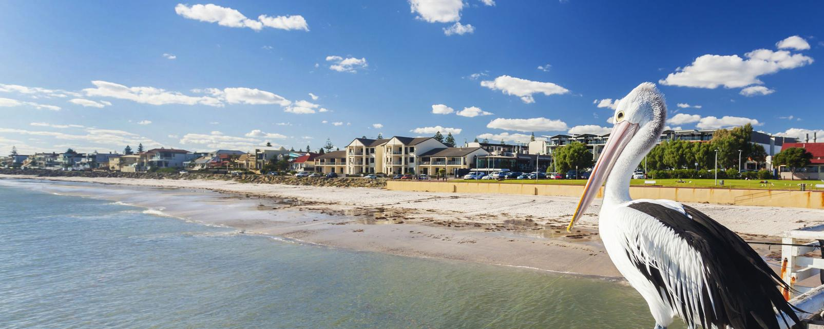 Océanie; Australie; Adelaide;