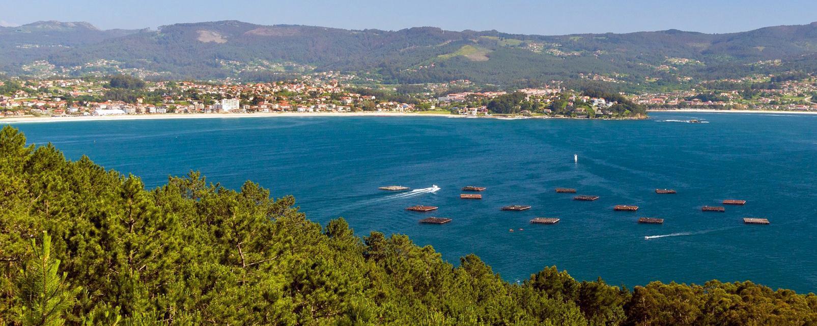 Europe; Espagne; Galice; Vigo;