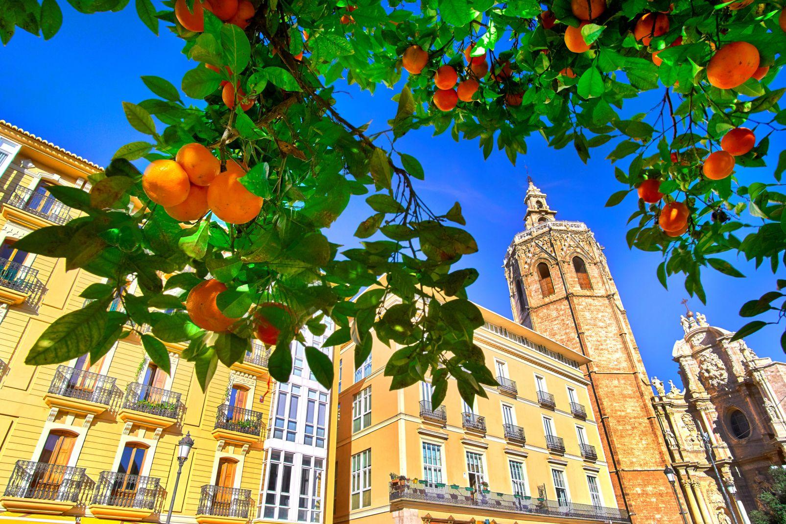 Europe; Espagne; Communauté de Valence; Valence;