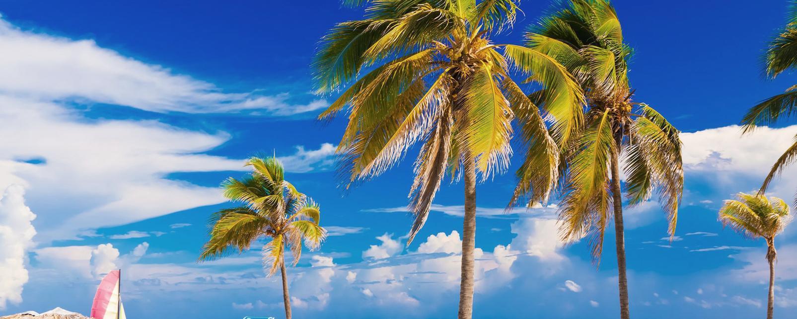Caraïbes; Caraibes; Cuba; Varadero;