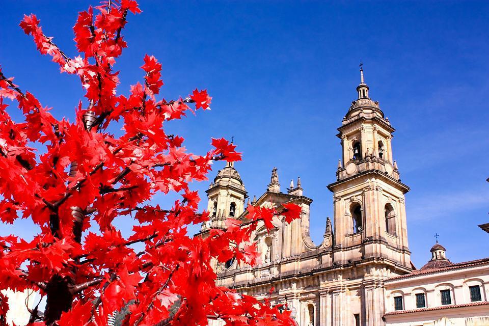 Situada en la plaza Bolívar, la Catedral es la más grande de Colombia y una de las más grandes de América Latina.