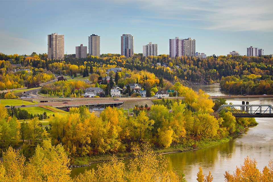 A shot of downtown Edmonton with the golden colours of the leaves in the foreground