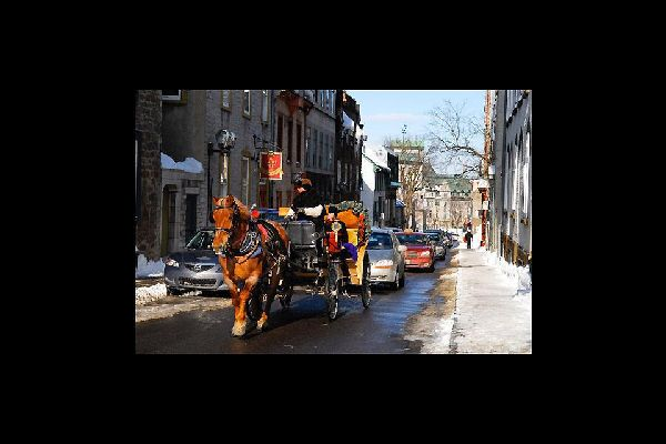 Instead of travelling by car, you could even opt for a horse and carriage ride in Old Quebec City, just to experience what it felt like to live in days gone by...