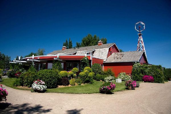 The Berry Barn is a popular restaurant serving home-style cooking and also has a pick-your-own area where guests can pick saskatoons (a berry)