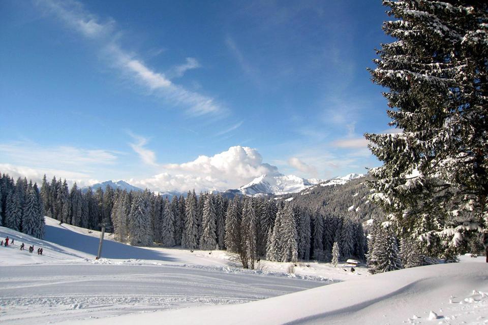 Le blason de la ville parle de lui-même. Sur fond bleu se découpent trois pics montagneux, aux côtés desquels se dresse un sapin. On l'aura compris, les Gets sont une destination d'hiver, aujourd'hui majoritairement tournée vers le ski. C'est entre 1135 et 1140 que furent posées les premières pierres de ce qui est actuellement considéré comme l'une des meilleures stations de ski de Haute-Savoie. Pour ...