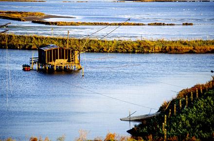Il Parco del delta del Po'