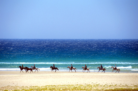 PORTUGAL. Horse riding, Algarve.